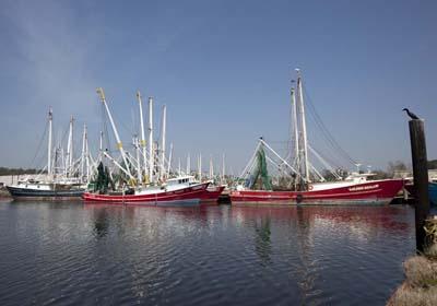 Shrimp Boats Bayou LaBatre
